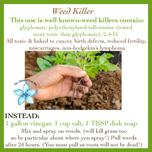 Weed Killer Alternatives